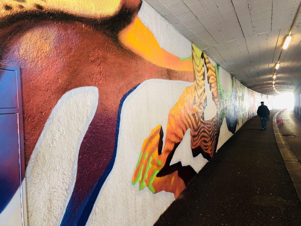 Buntees Grafitti Kunstwerk an der Wand der Tunnelunterführung Neustadt in Wels
